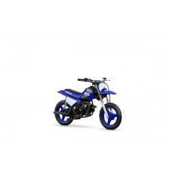 Moto enfant PW50 2019